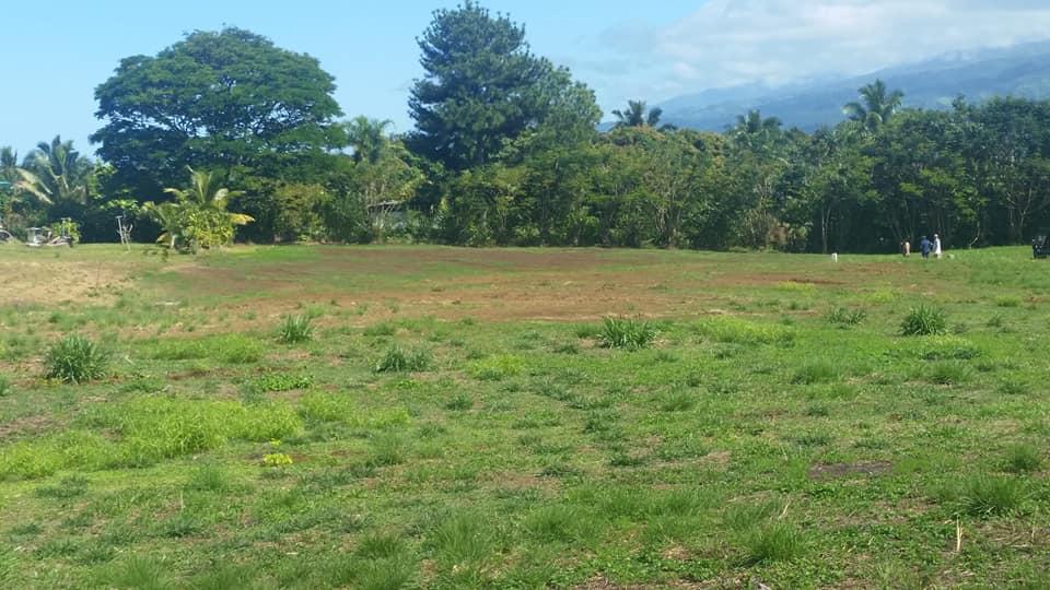 PUUNUI – Vente terrain – REV 27818