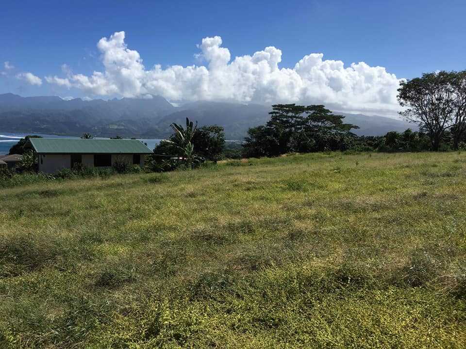 PUNUUI – Vendu terrain – REV 5011