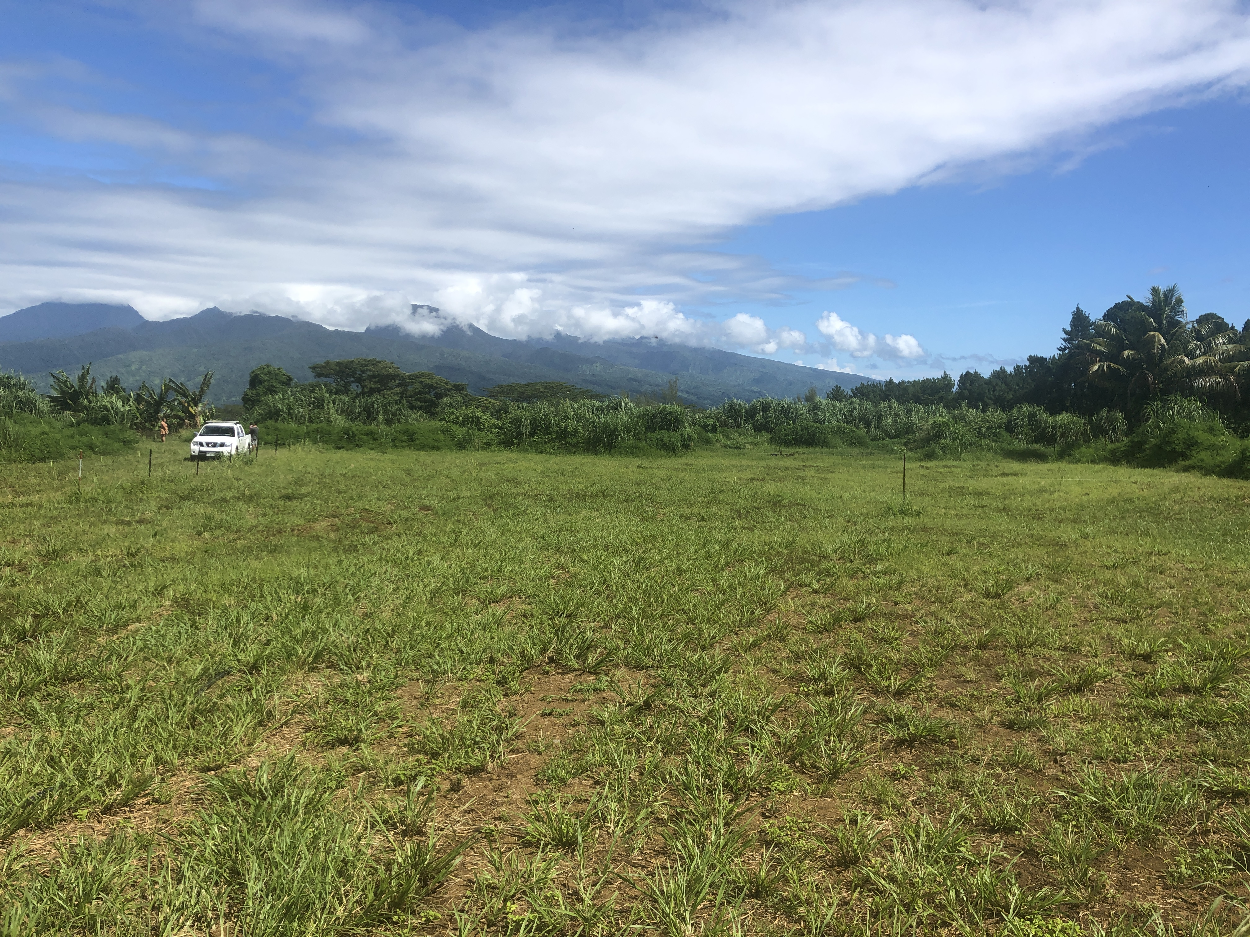AFAAHITI c/mont – Vente terrain – REV 5006